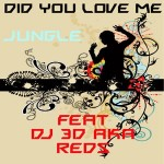 Did You Love Me Feat DJ 3D aka Reds